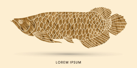 arowana: Gold Arowana Fish, designed using grunge brush graphic vector.