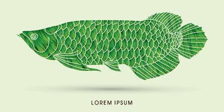 Green Arowana Fish, designed using grunge brush graphic vector. Illustration