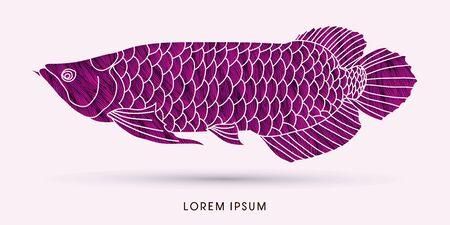 Purple Arowana Fish, designed using grunge brush graphic vector. Illustration