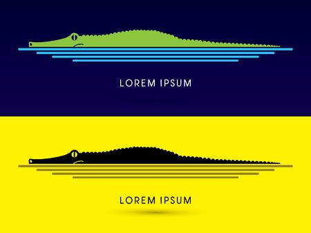 cartoon crocodile: Crocodile swimming ,side view graphic vector.
