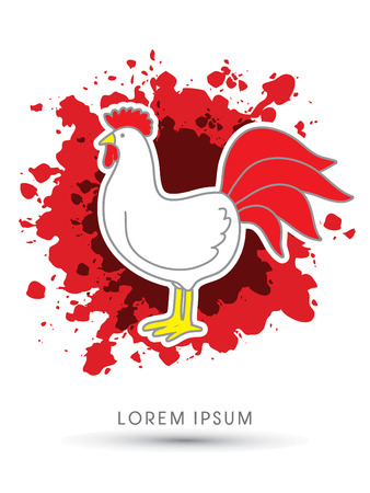 cocky: Chicken designed on splash blood background graphic vector Illustration