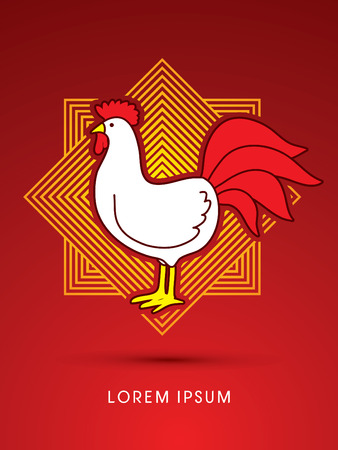 cocky: Chicken designed on line square background graphic vector