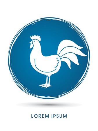 cocky: Chicken designed on  grunge  cycle background graphic vector