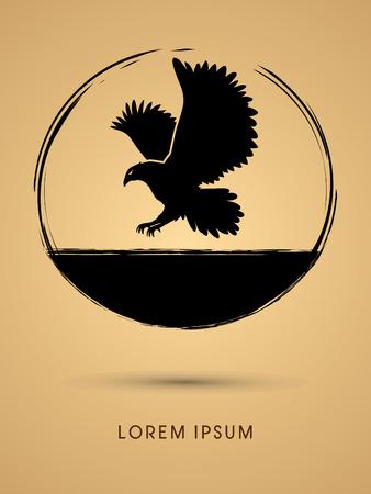 osprey: Eagle flying designed using grunge brush graphic vector.