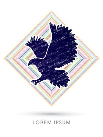 osprey: Eagle flying designed using grunge brush on line colorful square background graphic vector.