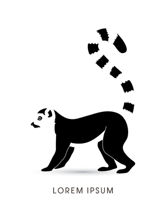 endangered species: Lemur graphic vector.