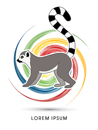 wheel spin: Lemur designed on spin wheel background graphic vector.