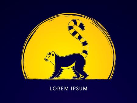 tailed: Lemur designed on moonlight background graphic vector. Illustration