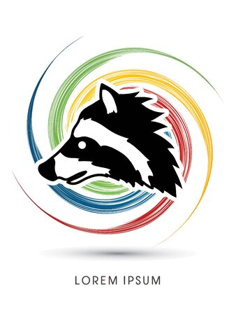 scavenging: Raccoon Face designed on colorful spin wheel background graphic vector.