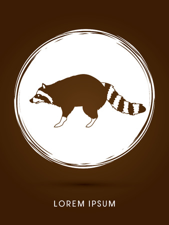 Raccoon designed on grunge circle background graphic vector.
