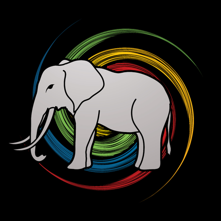 spin: Elephant designed on spin wheel background graphic vector. Illustration