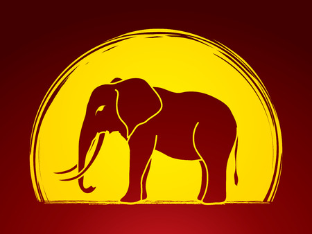 sanctuaries: Elephant designed on moonlight background graphic vector.