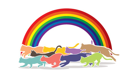 crowd tail: Cats nine lives designed on line rainbows background graphic vector. Illustration
