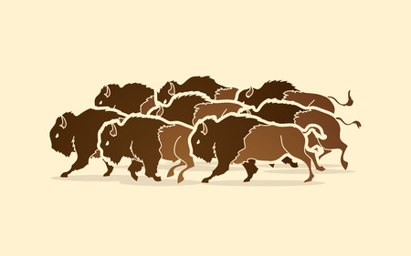crowd tail: Group of buffalo running graphic vector Illustration