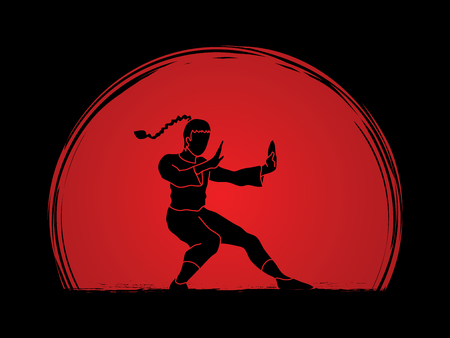 combative: Kung fu pose, designed on sunset background graphic vector. Illustration