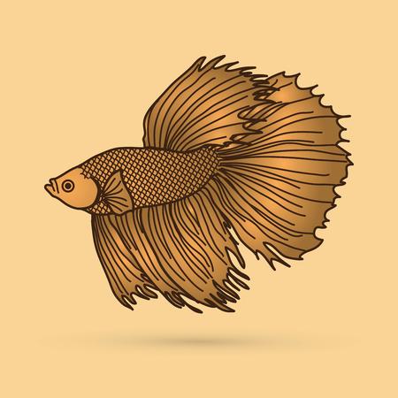 Gold Siamese fighter fish graphic vector. Illustration