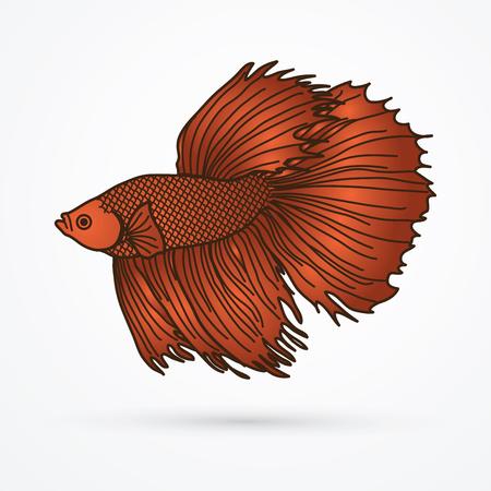Bronze Siamese fighter fish graphic vector.