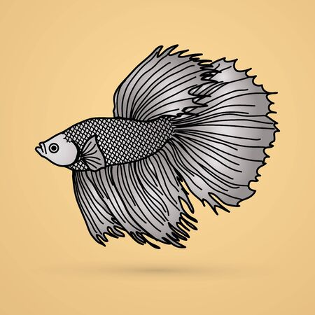Silver Siamese fighter fish graphic vector.