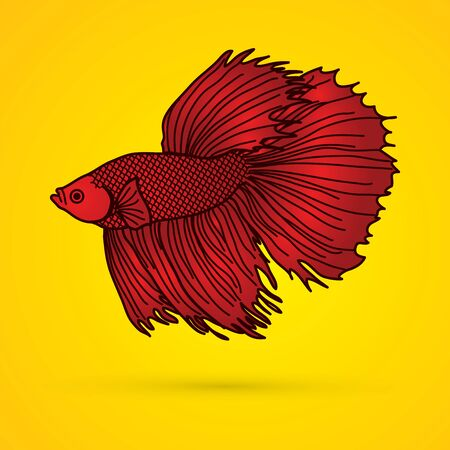 Red Siamese fighter fish graphic vector.