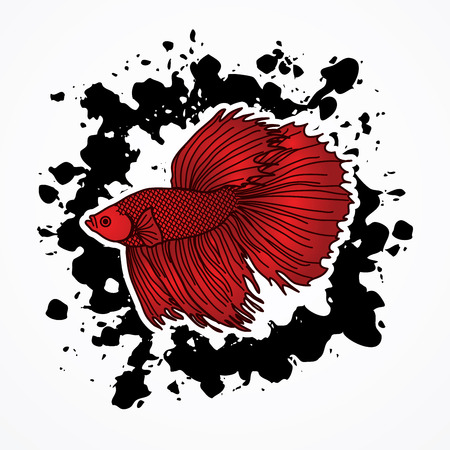 fish, fighter, thailand, fly, line, fighting, smooth, asia, illustration, color, skin, draw, art, background, isolated, swim, bangkok, abstract, thai, sketch, siamese, water, hand, animal, aquarium, betta, aggressive, motion, splendent, exotic, elegant, b