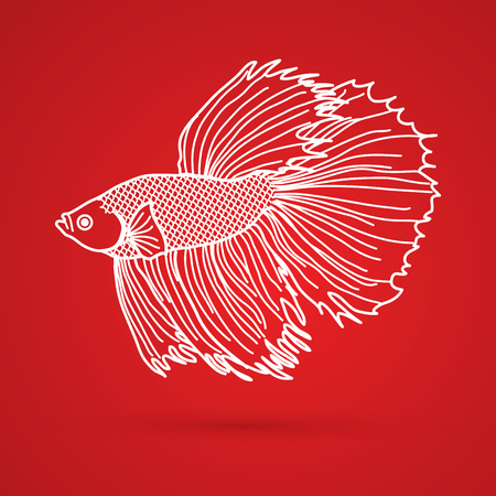 siamese: Siamese fighter fish outline graphic vector.