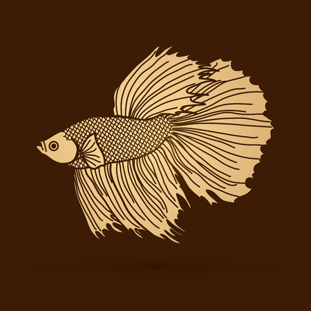 siamese: Siamese fighter fish designed using gold colorful graphic vector.