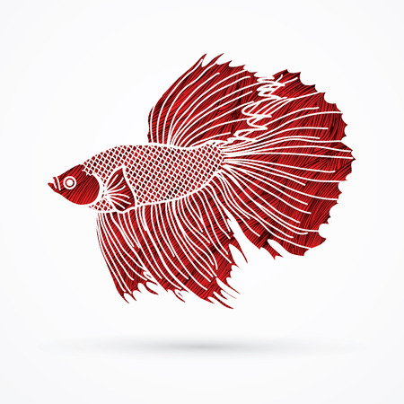 Siamese fighter fish designed using red grunge brush graphic vector.