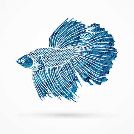 Siamese fighter fish designed using blue grunge brush graphic vector.