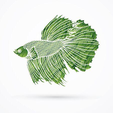 Siamese fighter fish designed using green grunge brush graphic vector.