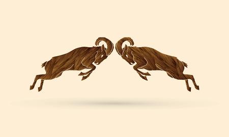 capra: Ibexes fighting designed using brown grunge brush graphic vector. Illustration