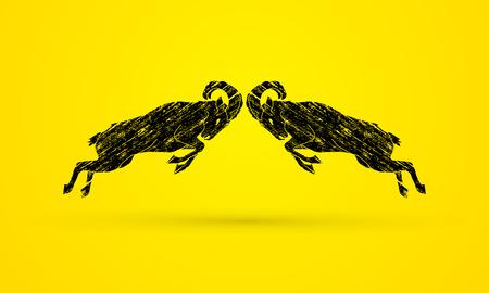 capra: Ibexes fighting designed using grunge brush graphic vector.