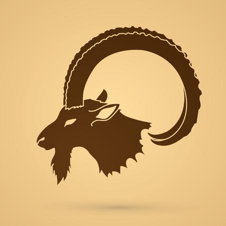 Ibex head with big horn graphic vector. Vektoros illusztráció