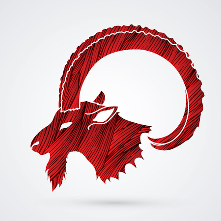 capra: Ibex head with big horn designed using red grunge brush graphic vector. Illustration