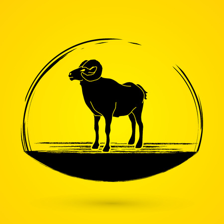 Sheep with big horn standing graphic vector.
