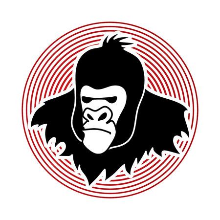Gorilla Head designed on line circle background graphic vector. Illustration