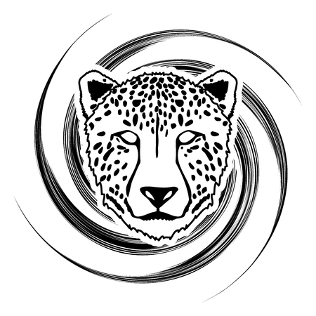 spin: Cheetah face designed on spin stroke background graphic . Illustration