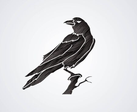 Crow designed using black grunge brush graphic vector.