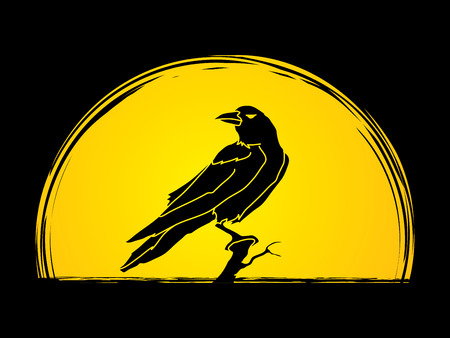 Crow designed on moonlight background graphic vector. Illustration