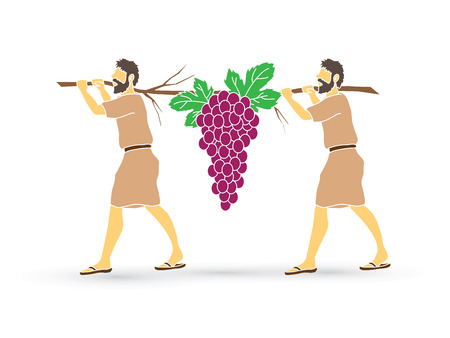 Two spies of Israel carrying grapes of Canaan, graphic vector.