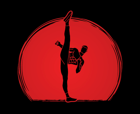 Kung fu, Karate high kick front view designed on sunlight graphic vector. Illustration
