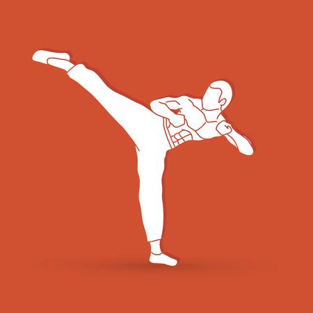 Kung fu, Karate kick graphic vector
