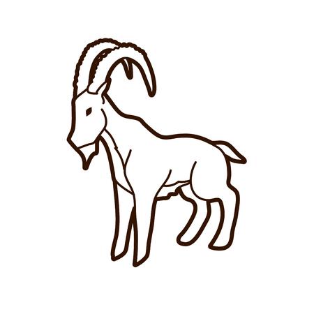 Ibex standing graphic vector