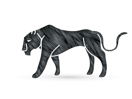 Black Panther tiger graphic vector. Illustration
