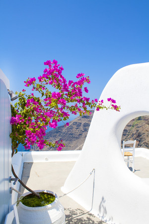 Santorini Island with traditional summer flowers, Greece Stock Photo