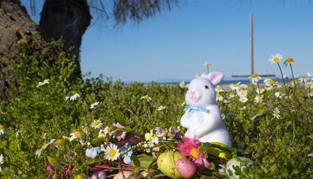 Easter white rabbit with eggs and flowers by the sea