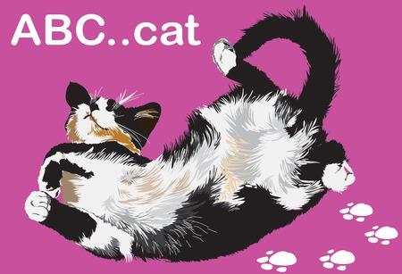 mixed family: lying cat on purple background illustration