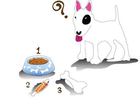 bull terrier: Illustration bullterrier dog feeding time on white background