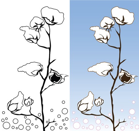 cotton plant: Cotton flower 2 colors blue and white graphic design