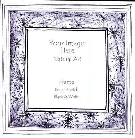 pencil sketch: Frame natural art line pencil sketch by hand my idea is no have original reference. Black and white color