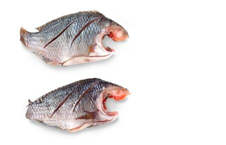 white nile: Two Nile Tilapia raw fish in Thailand, isolate on white background and clipping paths, Has copy space. Stock Photo
